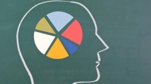 brain-pie-chart