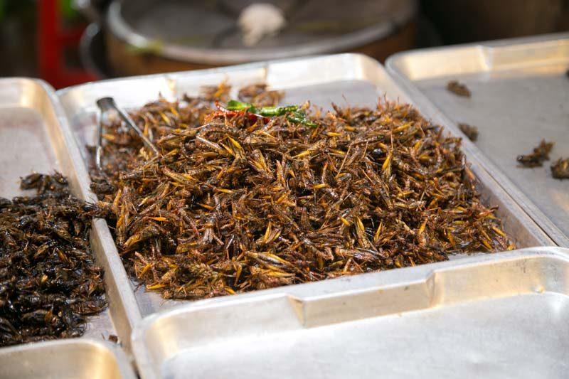best bangkok street foods-7706