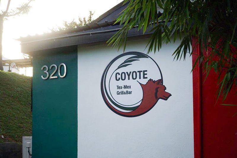 coyotes--23