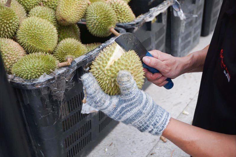 durian-fest-