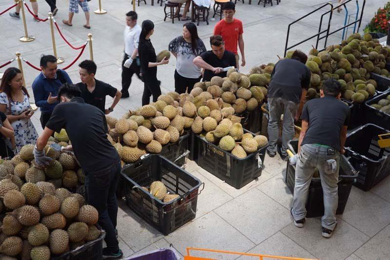 durian-fest--15