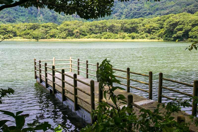 miyakejima island tokyo-5256