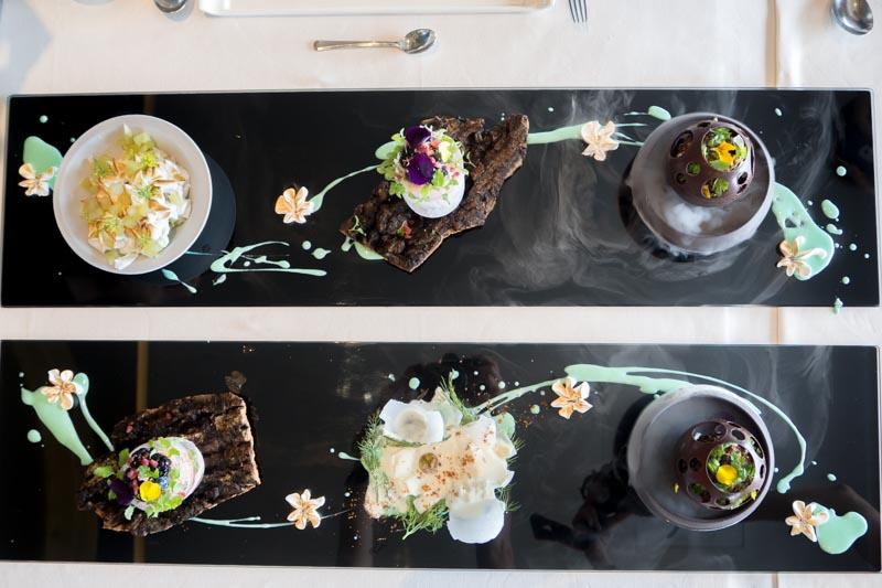 Stellar At 1-Altitude - Dessert Art