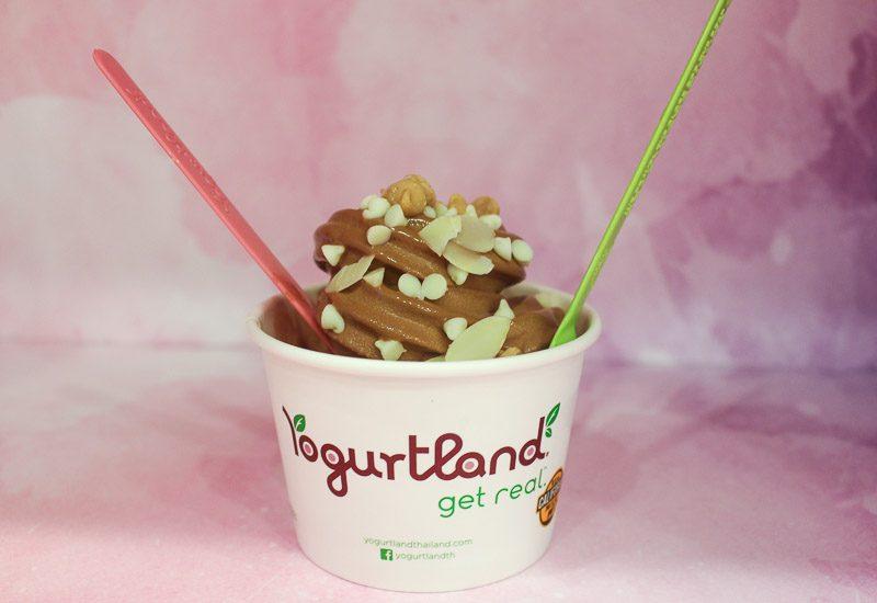 Yogurtland-10