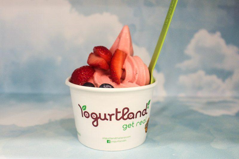 Yogurtland-7
