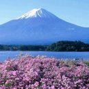 http://www.yamanashi-kankou.jp/foreign/english/english002.html