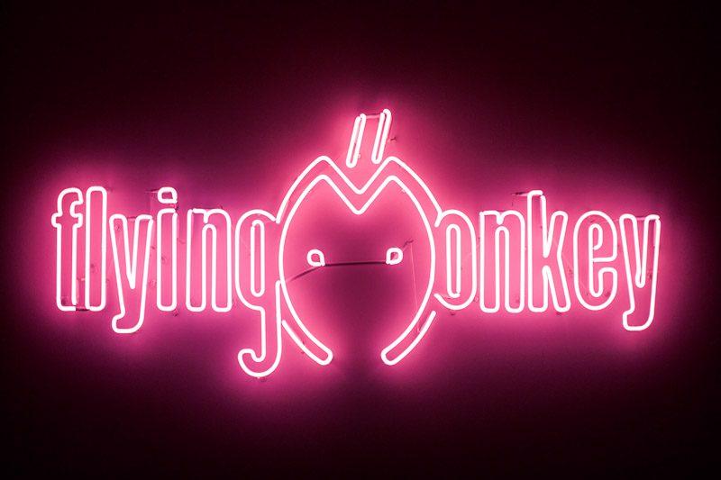 Flying Monkey-1