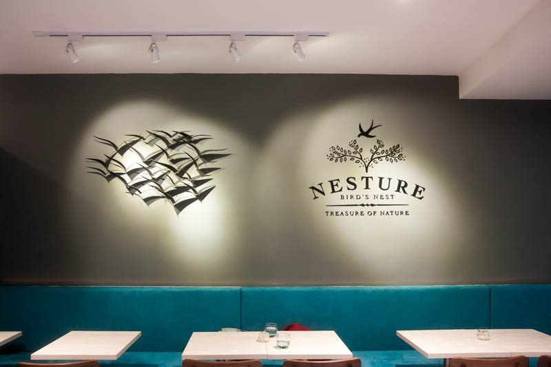 nesture edited-2