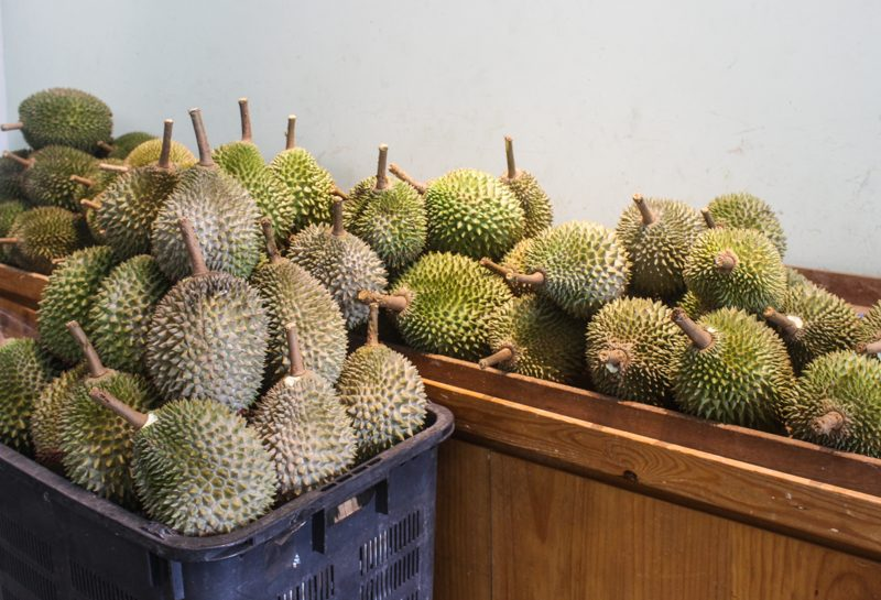 The Durian Story 1