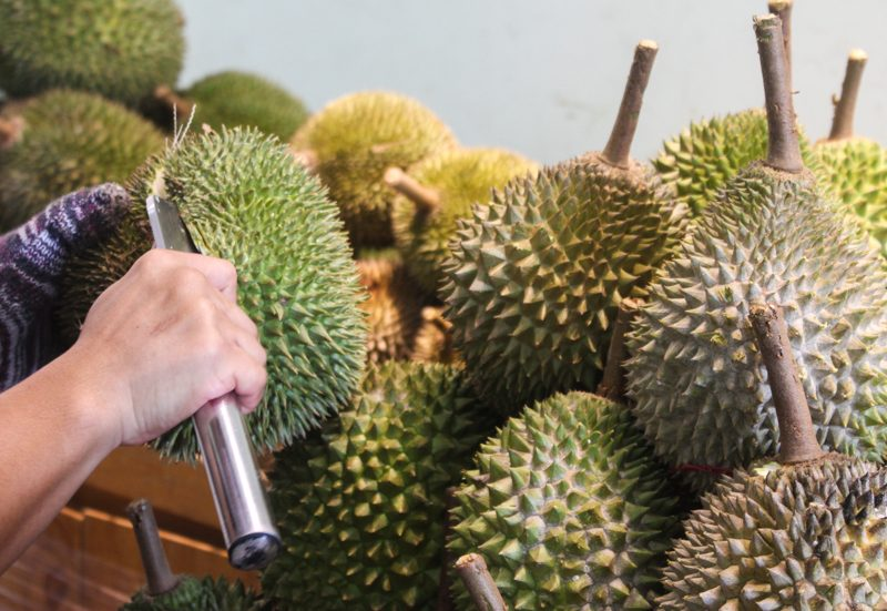 The Durian Story 2