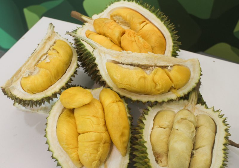The Durian Story 8
