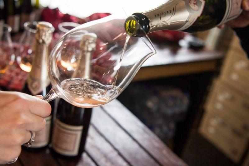 Pinot Palooza 02 ONLINE