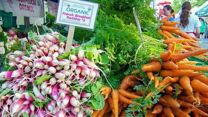 Loewen Farmer's Market Online 3