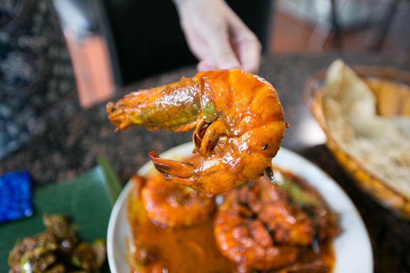 Samy's Curry 0834