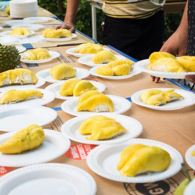 Online 128 Durian