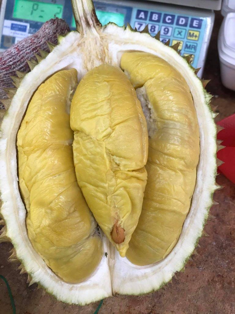 Online Melvin's Durian