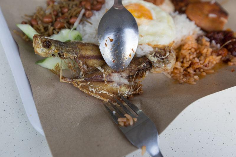 Nasi Lemak Showdown Bali Nasi Lemak 11