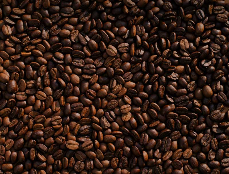 Produce Explained Coffee 10 ONLINE