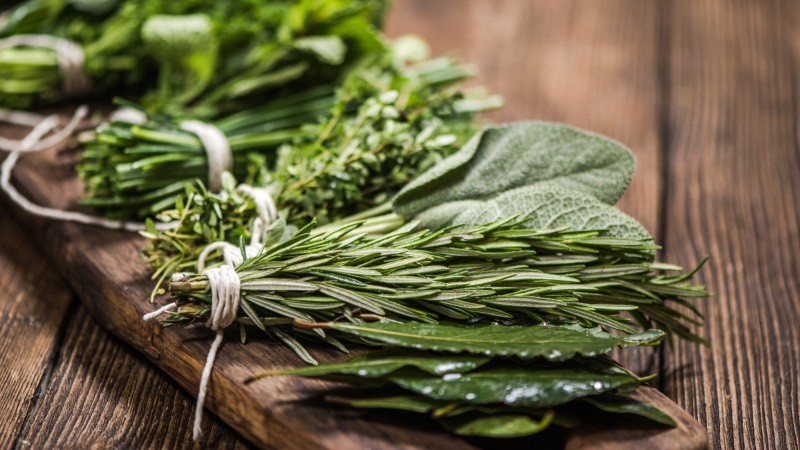Produce Explained Herbs Online