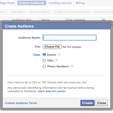Facebook Marketing Ad Custom Audience