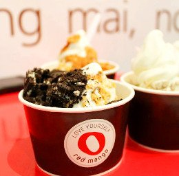 Red mango best froyo in singapore