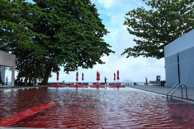 Samui-the-library-red-pool