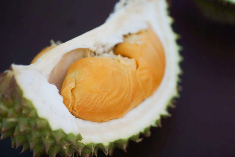 durian-fest--10