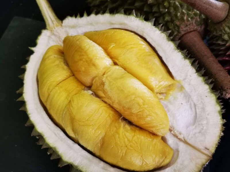 Produce Explained Durian Black Gold Online 1 2