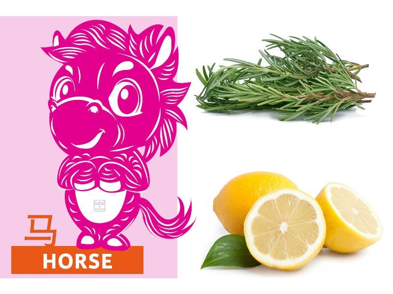 Picture of horse zodiac, rosemary, and lemons